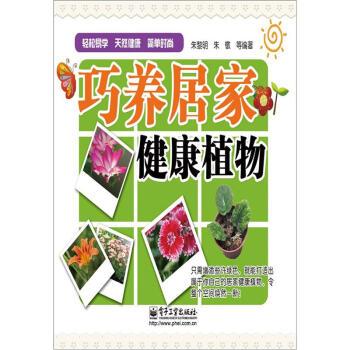 巧养居家健康植物 pdf epub mobi 下载