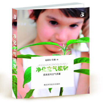 净化空气植物