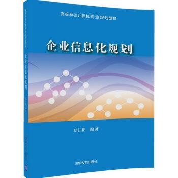 企业信息化规划/高等学校计算机专业规划教材 pdf epub mobi 下载